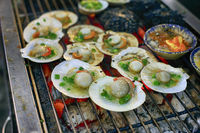 Scallops, commonly known as scallops
