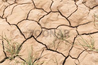 Textures in the arid soil of M'Hamid El Ghizlane.