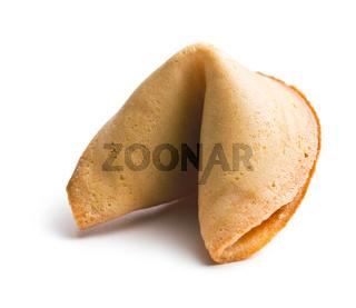 furtune cookie