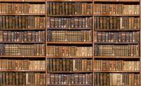 Defocused shelves of old antique books for background