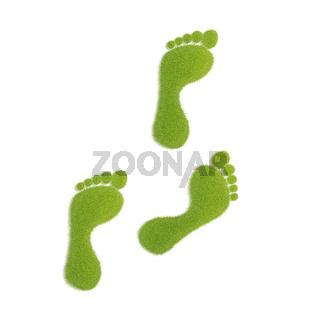 Ecological footprint concept illustration. Grass patch footprint walk.