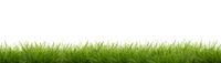 Green grass cut out - banner