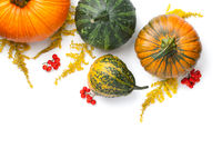 Autumn Pumpkins With Goldenrod And Mountain Ash