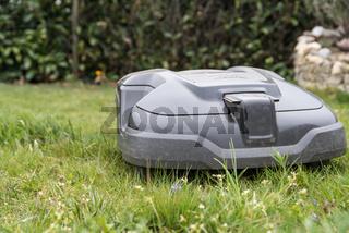 Mähroboter pflegt Rasen im Garten - Rasenroboter
