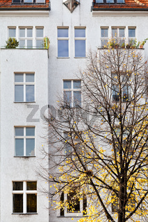 facade of apartment building and yellow linden