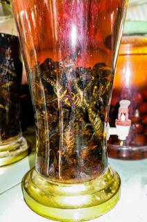 scorpions marinated in rice or corn brandy