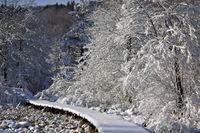 Forgotten Snowy Wooden Catwalk