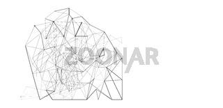 netzwerk netz linien punkte banner freigestellt