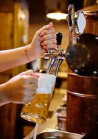 Vertical image close up view female barman hands pouring beer in mug, alcohol beverage served from a tap