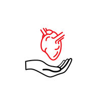 Hand hold an anatomical heart, healthcare concept outline icon on white