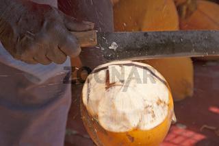 Mann öffnet Kokosnuss, Sri Lanka, Ceylon, Südasien, Asien