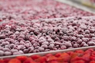 Gefrorene Himbeeren und frische Erdbeeren