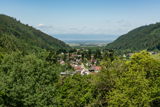 Black Forest with view of the Vosges mountains