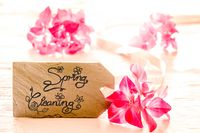 Label With Calligraphy Spring Cleaning, Pink Spring Flower Blossom