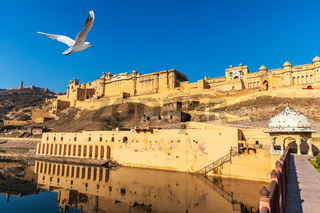Famous Amber Fort in Jaipur, wonderful day view, India