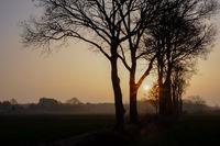 Scenic view of farm landscape at sunrise