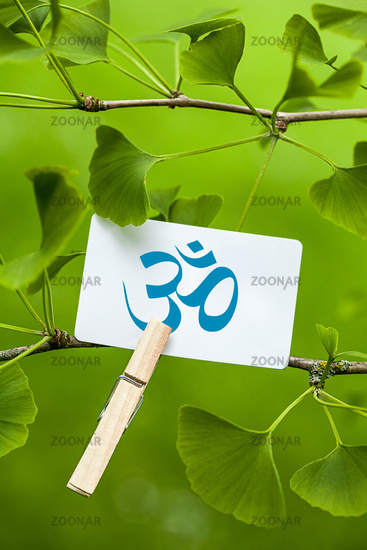 The Om Sign in a Ginkgo Tree
