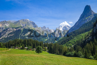 Mountain and pastures landscape in French alps