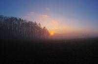 Afterglow in a foggy winter landscape