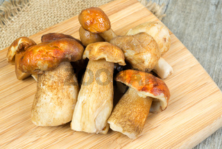 mushrooms porcini