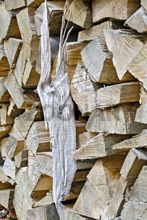 Stapel von Holzscheiten im Sonnenlicht