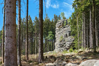 Feuersteinklippe near Schierke in the Harz National Park in Germany