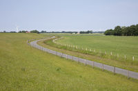 Lane at the dike