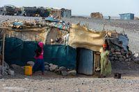 Huts in Afar region, Ethiopia