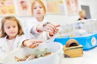 Kinder halten Mäuse im Biologieunterricht der Grundschule