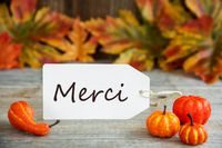 Label, Merci Means Thank You, Pumpkin And Leaves