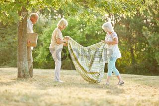 Senioren machen Picknick im Park