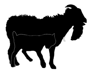Zicklein und Bock - Kid silhouette with buck