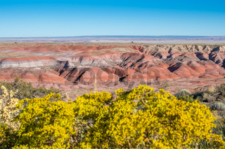 The Rim Trail in Petrified Forest National Park, Arizona
