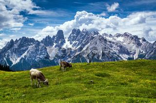 Dolomiten - Cristallo Gebirgszug