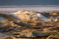 Dunes on the North Frisian Island Amrum in Germany