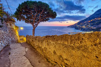 Small alleyway with a pine tree in Amalfi, Italy, at sunset