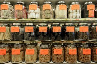 Gläser mit getrockneten Meerestieren wie Seegurken, Schnecken un