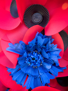Special Poppy to Commemorate the Centenary of the Battle of the Somme