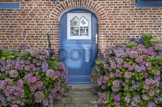 Hauseingang mit Hortensien
