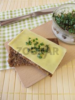 Kaesebrot mit Sprossen-Broccoli