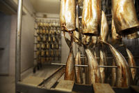 Industrial production of smoked fish. Fish factory.