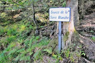 Quellgebiet und Quelle der weissen Saar in Frankreich