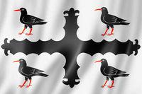 Flintshire County flag, UK