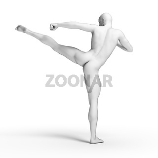 3d rendered illustration - white fighter