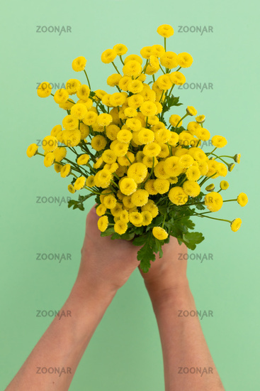Person holding bunch of yellow flowers on green background