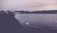 empty city of Amsterdam during lockdown due to coronavirus 2020