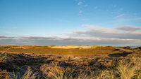Shifting dunes