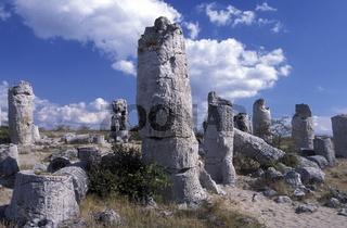 Der Steinerne Wald aus bizarren Steinformationen ausserhalb der Stadt Varna an der Schwarzmeerkueste von Bulgarien.