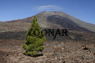 Der Vulkan und Pico del Teide der Insel Teneriffa auf den Kanrischen Inseln im Atlantischen Ozean.