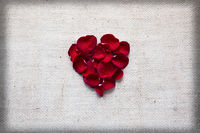 Red heart of roses petals isolated on a cloth background.
